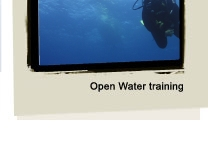 Padi Open Water - London